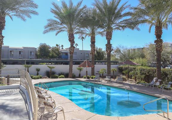 pool, pool patio at Villa Contento Apartments in Scottsdale, AZ