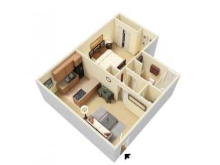 Floor Plan 1 Bed Junior