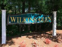 Wilkins Glen property image