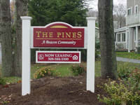 The Pines property image