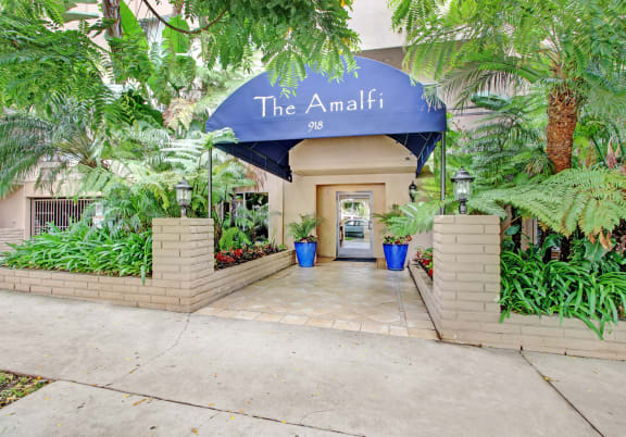 The Amalfi property image