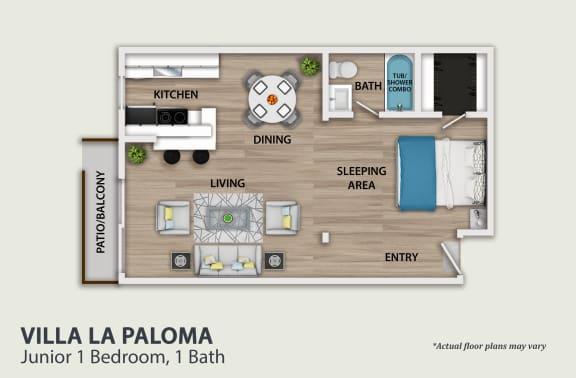 Floor Plan  Junior 1 Bedroom