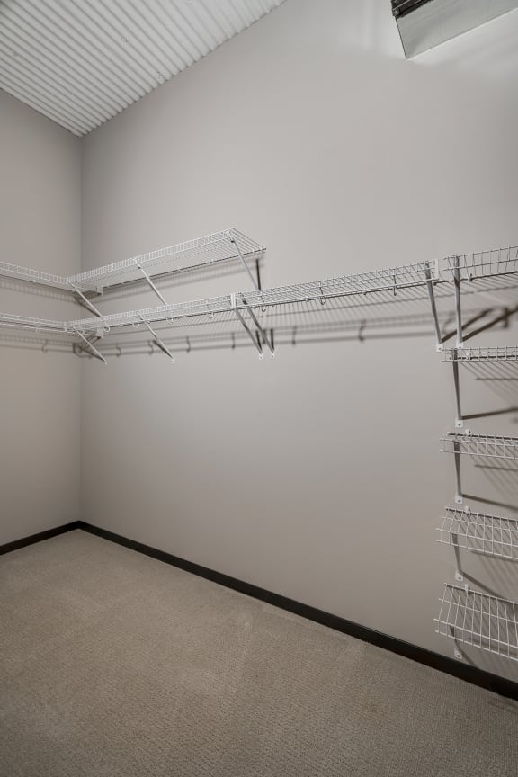 Large Walk-In Closet with Multiple Built-In Shelves