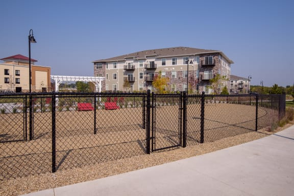 Fenced In Dog Park