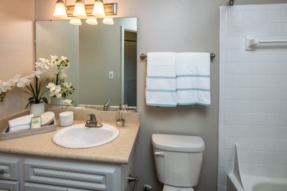 Bathroom with Large Vanity and Tiled Shower with Tub