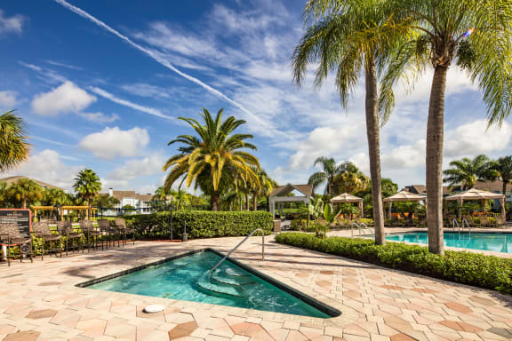 Outdoor Pool and Hot Tub Surrounded by Palm Trees and Beautifully Manicured Landscaping