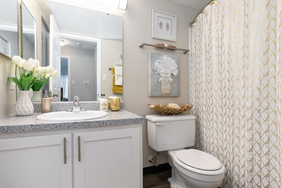Bathroom with Hardwood Style Flooring and Large White Vanity with Stone Top