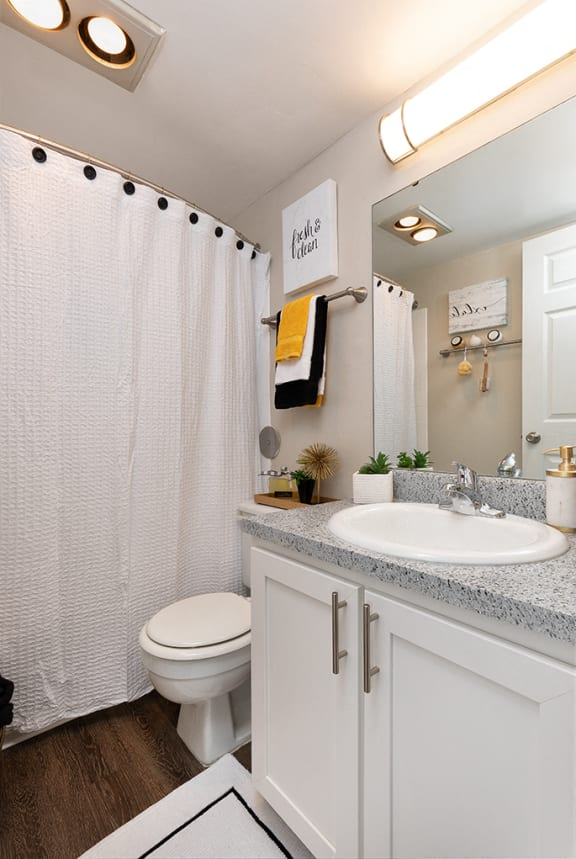 Full Sized Bathroom with Hardwood Style Flooring and White Vanity with Stainless Steel Hardware