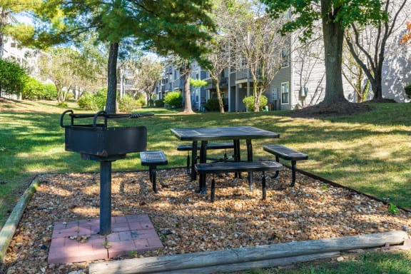 Outdoor Grilling and Picnic Area