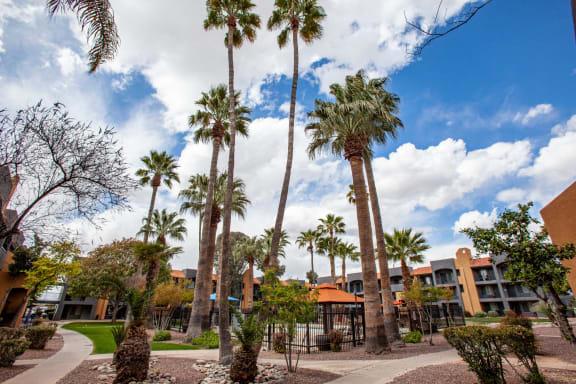 Exterior and landscaping at Casa Bella Apartments in Tucson AZ 4-2020