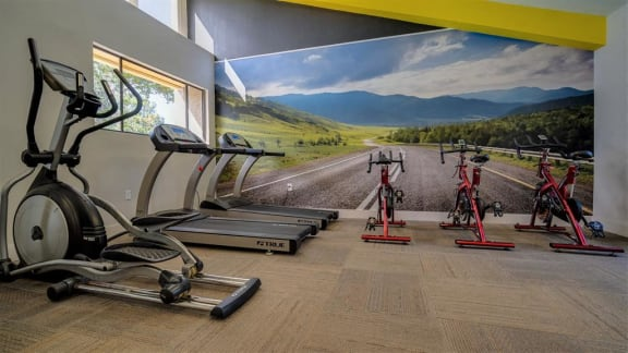 fountains at forestwood fitness center cardio machines