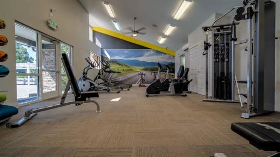 fitness center overview