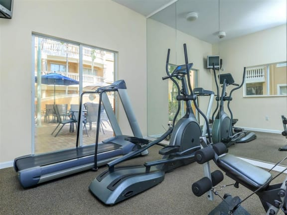 shamrock of sunrise fl apartments fitness center
