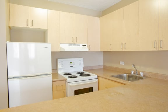 Bachelor apartment for rent