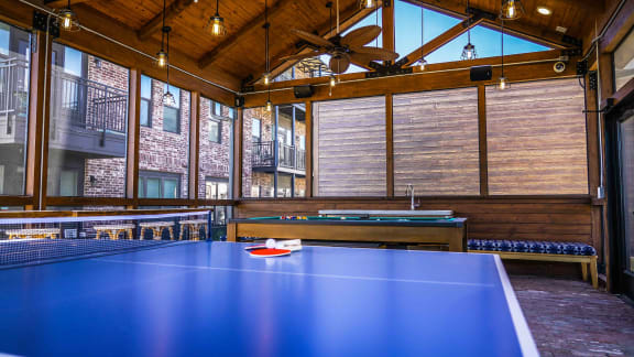 Game Room Ping Pong