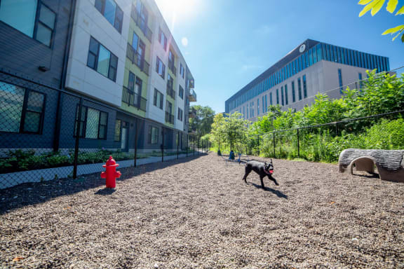 Bark Park with Agility Equipment at CityWay, Indianapolis