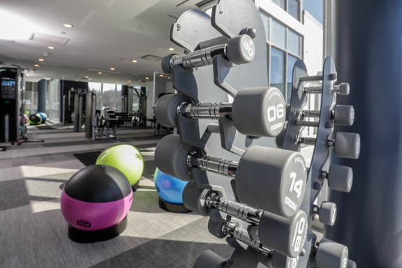 Fitness Center; Free Weights