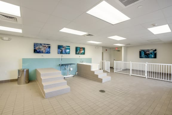 Indoor Pet Wash Station at Amaray Las Olas by Windsor Apartments, Fort Lauderdale, Florida