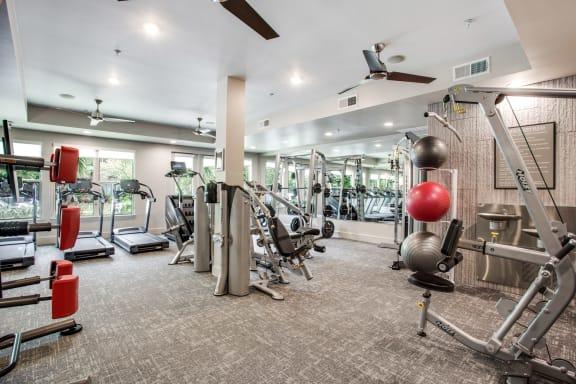 Fitness Center at Windsor West Lemmon, 3650 Cedarplaza Lane, Dallas