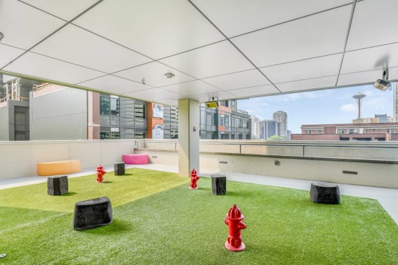 Rooftop Pet Park at The Martin, 2105 5th Ave, Seattle