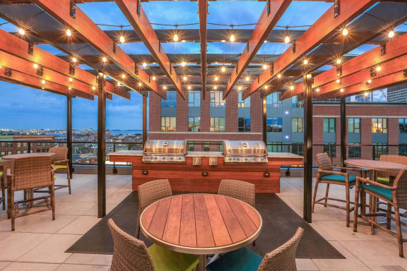 Sky Terrace with gas grills at The Victor by Windsor, Boston, MA