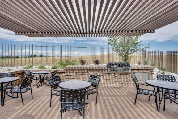 Grilling Station with Dining Space at Windsor at Meridian, 80112, CO