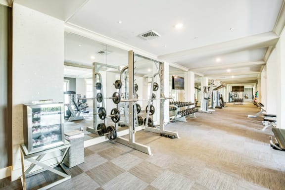 Fitness Studio with Weight Station at Windsor at Doral, Florida, 33178