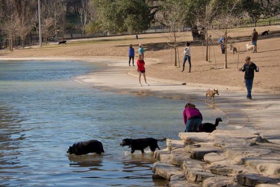 Johnny Steele Dog Park near Windsor Memorial, Houston, TX