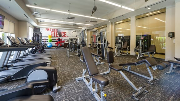 Fitness center at Domain by Windsor, TX, 77077