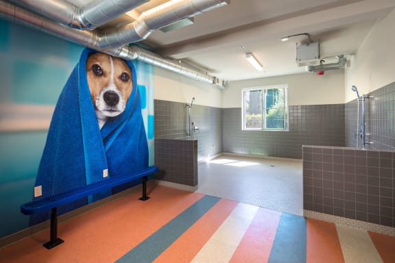 Pet Wash And Blow Dry Bar at Blu Harbor by Windsor, 1 Blu Harbor Blvd, CA