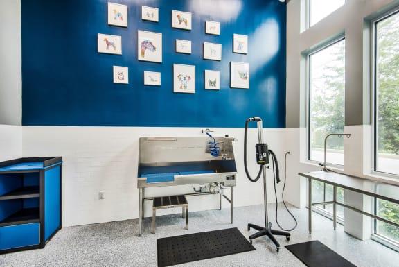 Pet wash station at Windsor Shepherd, TX, 77007