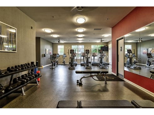 state-of-the-art fitness center with free weights at The Villas at Main Street Apartments in Ann Arbor, MI