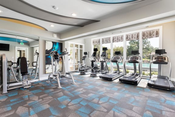 Gym with cardio equipment.