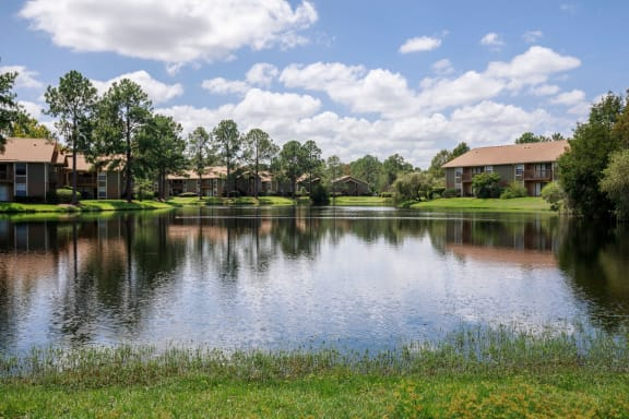 Community lake with club house and tress in background.