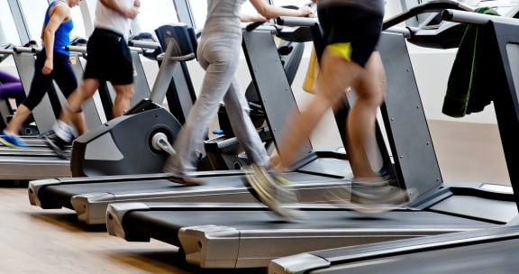 Three peoples legs working out on treadmills at a gym.