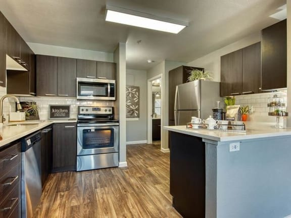 Model kitchen with upscale appliances