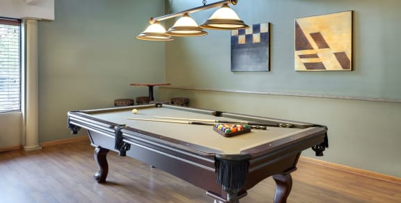Park Pointe Apartments in St. Louis Park, MN Billiards Table