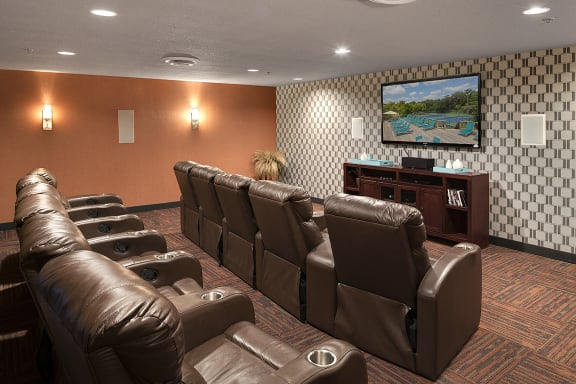 Regency Woods Apartments in Minnetonka, MN 3D Theater Room