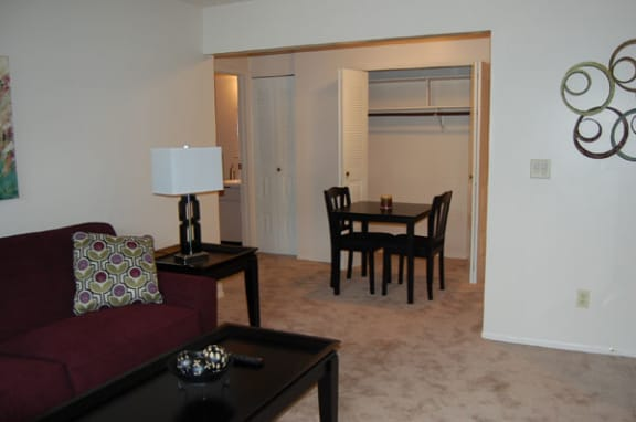 Additional Closet Space at Brookside Apartments in Springfield, MI