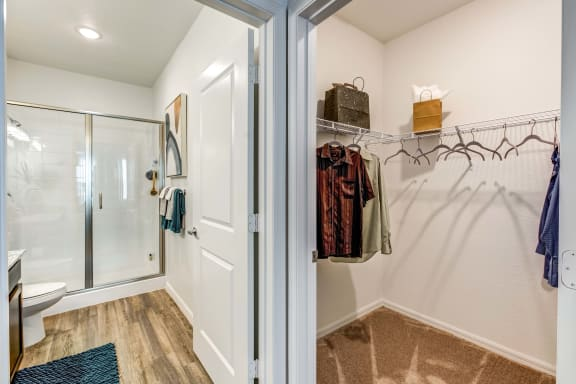 master bath and walk-in closet