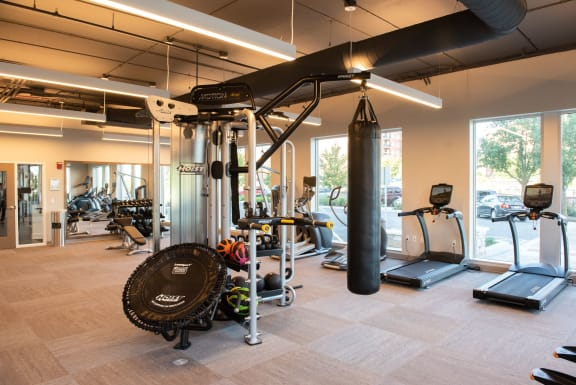 Ellison Luxury Apartments with Fitness and Wellness, a Clubroom, Billiards, Roof deck Pool in Downtown Des Plaines IL