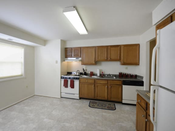 Cub Hill Apartment Kitchen in Parkville Maryland