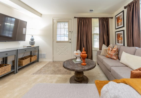 Spacious and bright Spring Hill Townhome living room
