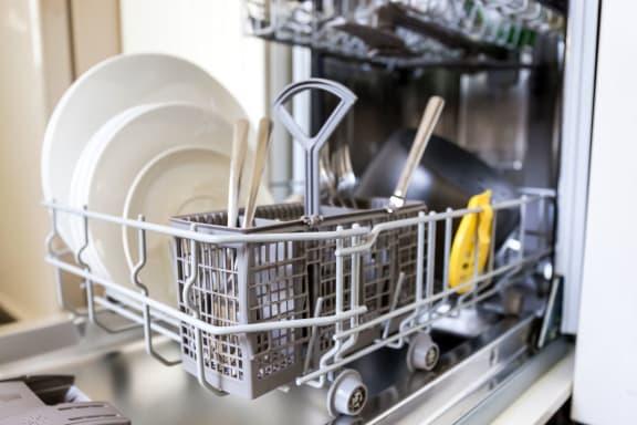 Dishwasher at Highland Club Apartments, Watervliet