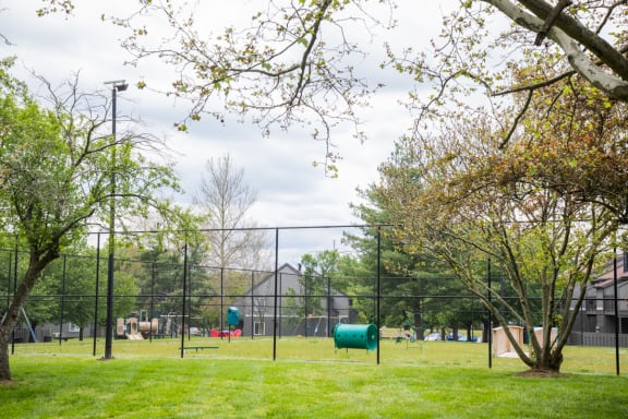 Dog Park at Woodbridge Apartments, Louisville, Kentucky