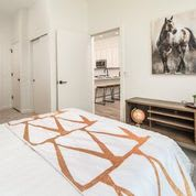 Spacious Bedrooms at Clovis Point, Longmont, CO