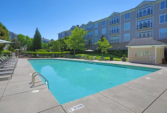 Invigorating Swimming Pool at Sterling Magnolia Apartments, Charlotte, NC
