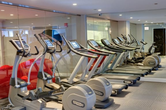 State-of-the-art Techno Gym Fitness Center  at Somerset Place Apartments, Illinois, 60640