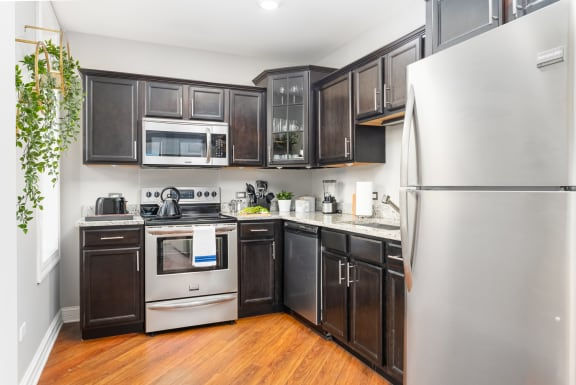 at Somerset Place Apartments, Chicago, 60640