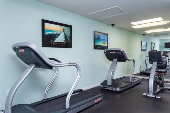 Cardio Zone at The Birches Apartments, 1512 Heather Hollow Circle #14, Silver Spring, MD